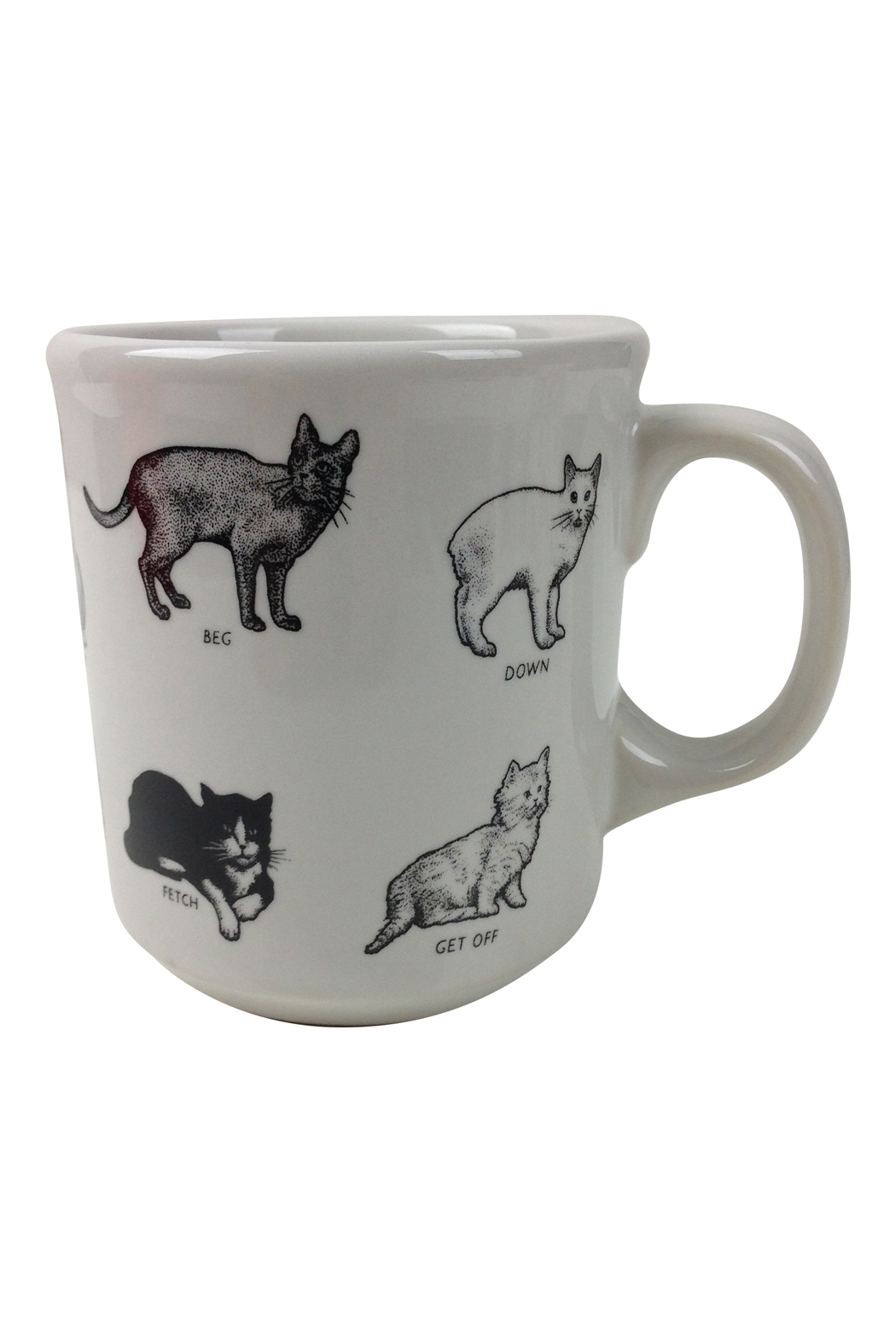 Crazy cat mug go home modern decor gifts for Modern home decor gifts