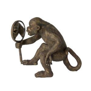 gh96 Monkey Mirror.