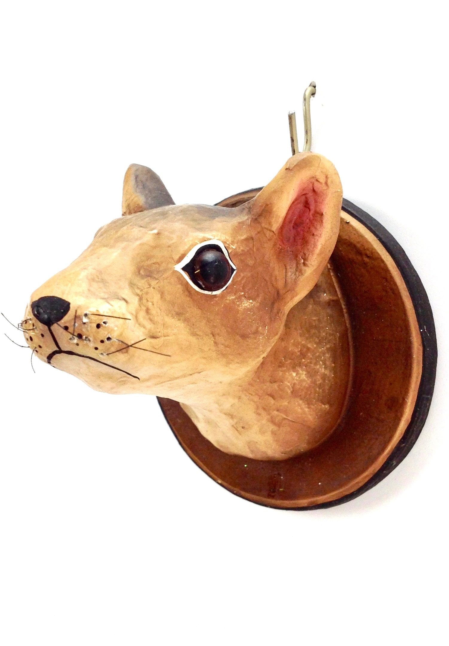 Squirrel Trophy Go Home Modern Decor Amp Gifts