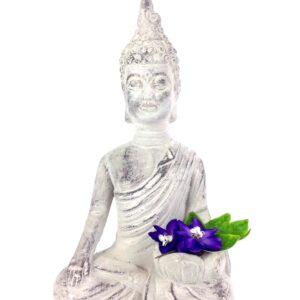 GH4 Lotus Flower Buddha 7