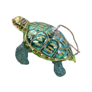 GH466. Turtle 1